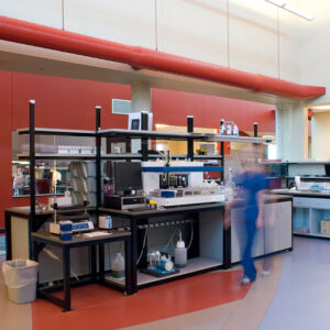 custom countertops for wet lab