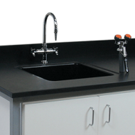 Black epoxy backsplash and lab sink